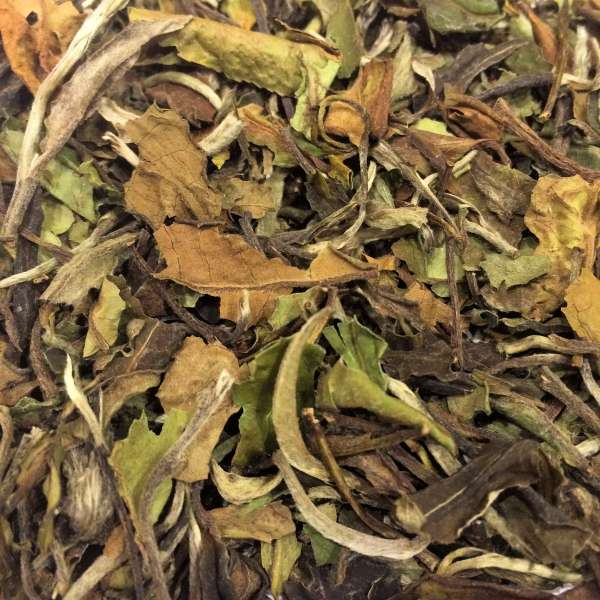 China Pai Mu Tan Weißer Tee